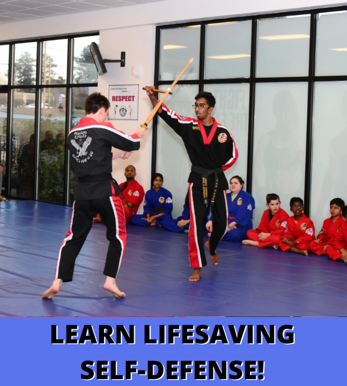 Adult Martial Arts Classes Duluth GA
